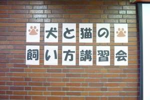 日野市犬と猫の飼い方講習会