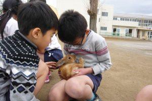 小学校「動物飼育推進校事業」