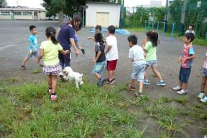 学校飼育動物 ふれあい