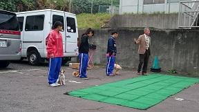 平成28年度多摩市犬の飼い方講習会